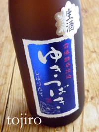 Yukitsubakishibori1